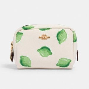 COACH Mini Boxy Cosmetic Case in Lime Print